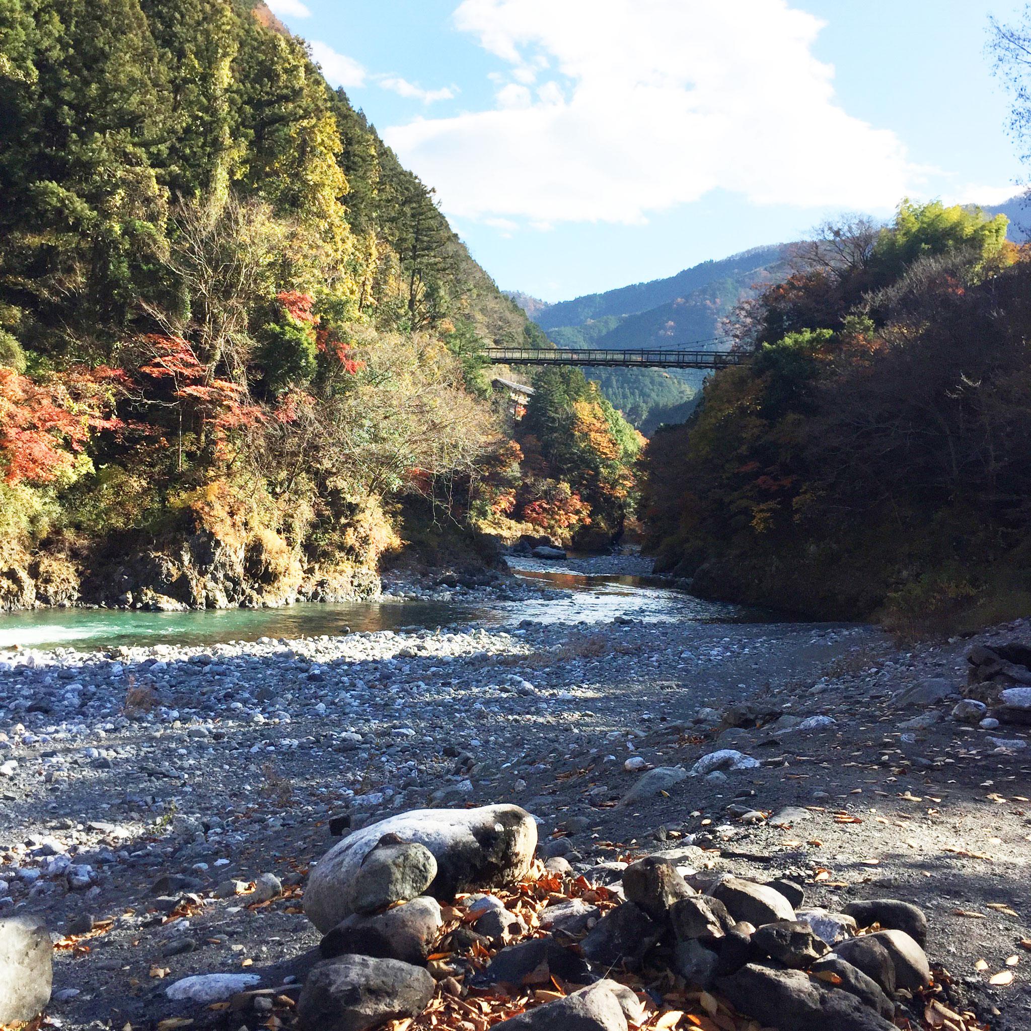 hikawa-camp_02