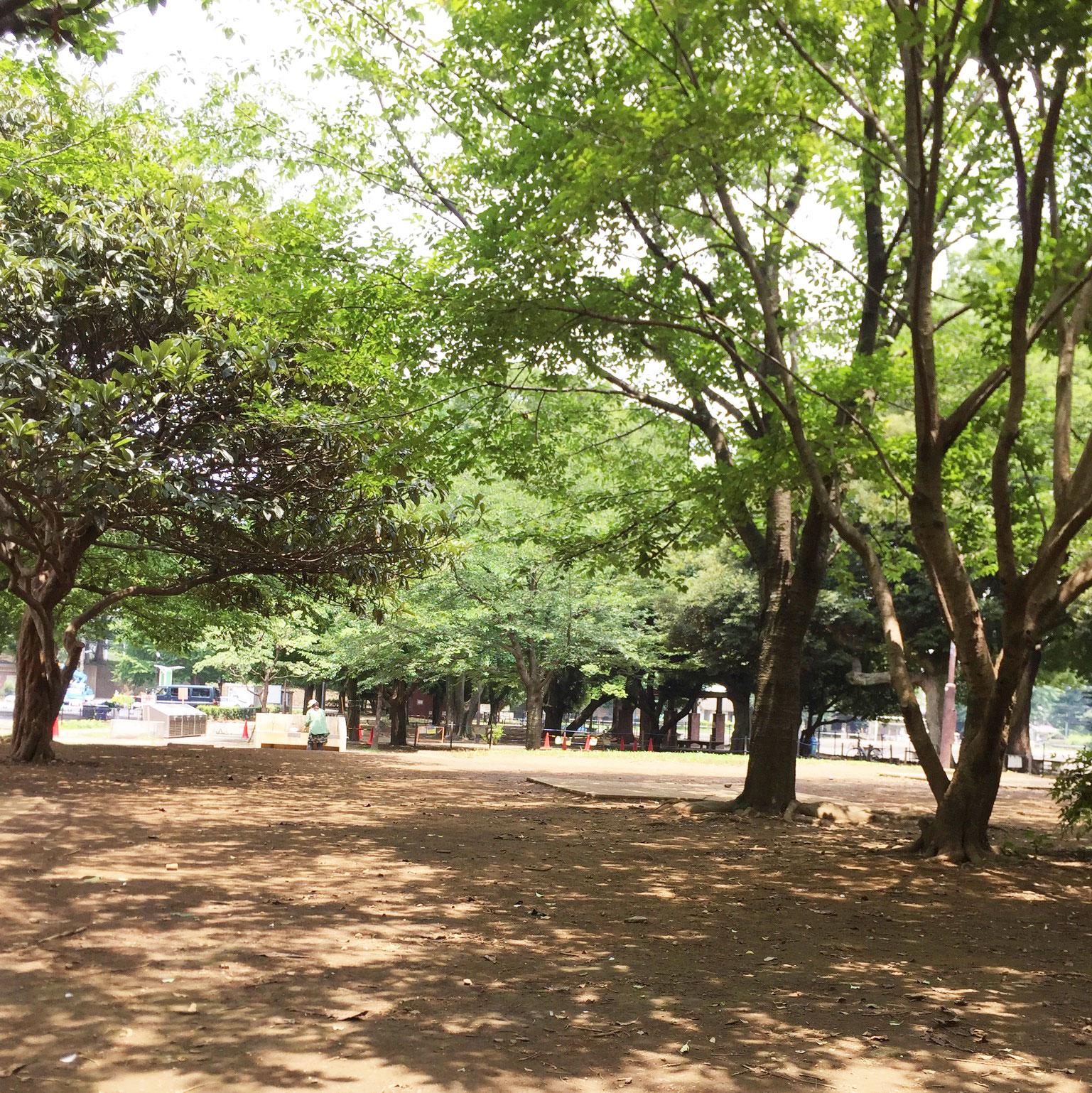 wadabori-campsite