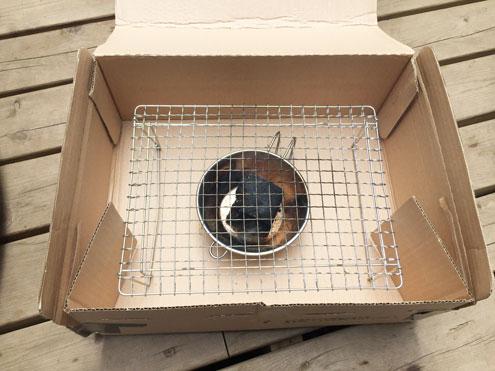 網を入れたamazon段ボール燻製