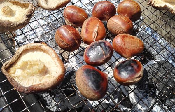 bbqコンロで栗を焼く