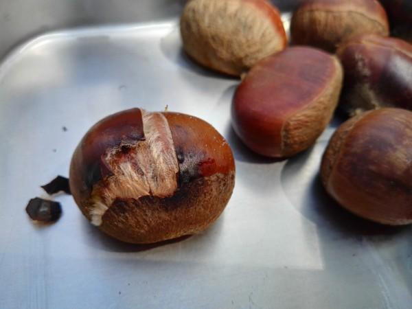 BBQコンロから焼き栗をおろす