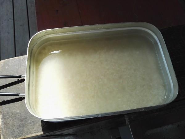 白いご飯を水に浸す